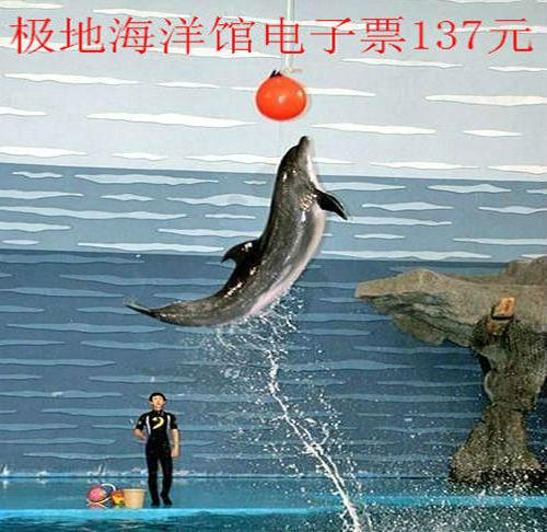 天津塘沽极地海洋馆海洋世界门票 恐龙岛亲子套票 恐龙岛电子票