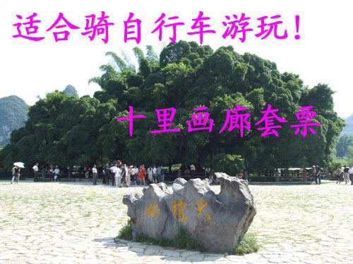 9 放飛心靈桂林旅游景點門票七星公園七星巖景區套票大熱 45 特價陽朔