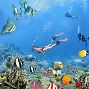 海南三亚旅游/亚龙湾海底世界潜水摩托艇等海上娱乐/优惠景点门票