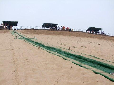 河北旅游 秦皇岛景点 国际滑沙活动中心门票预订 特惠