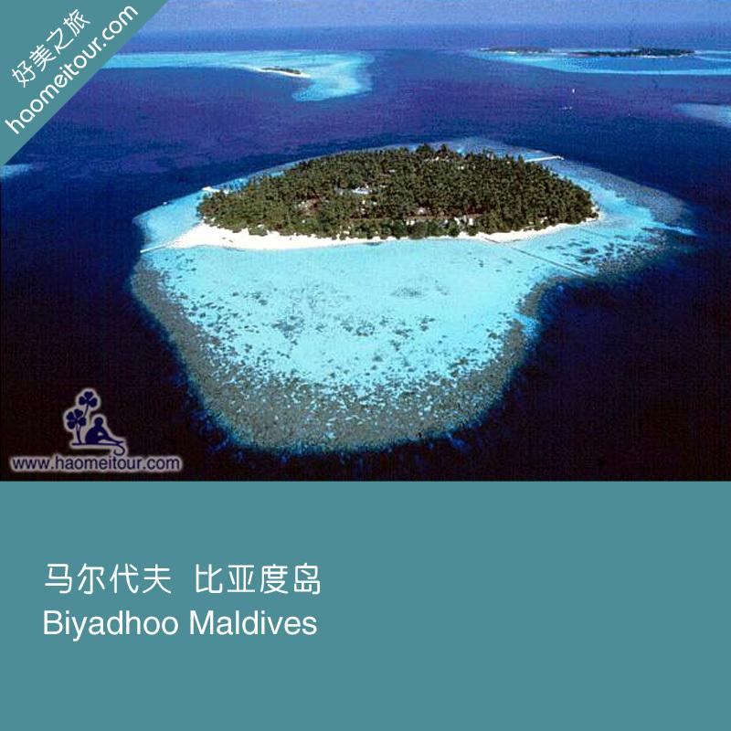 马尔代夫蜜月自由行 biyadhoo 比亚度岛酒店预定代理