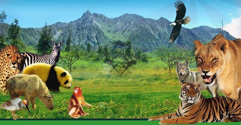 秦岭野生动物园 景点门票信息