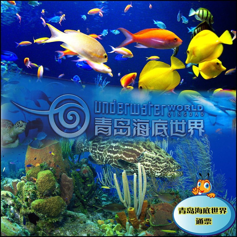 > 青岛旅游|青岛特价门票|青岛海底世界大通票   价 格: 90 元 供&