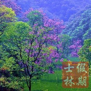 【士林假期】河南郑州浮戏山杨树沟真人cs风景区门票预订