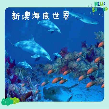 秦皇岛新澳海底世界门票 新奥海底世界 海洋馆电子票★节假日通用