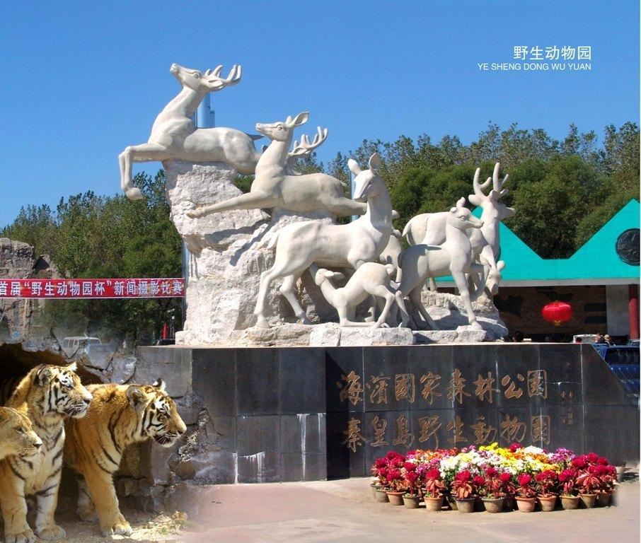 秦皇岛野生动物园(野生动物园)