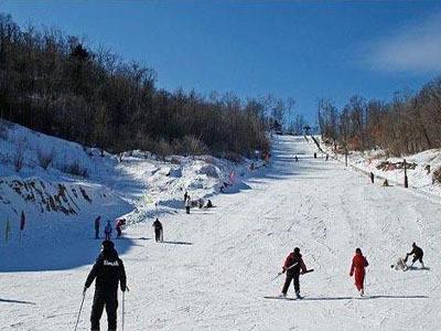 【黑龙江旅游景点门票】哈尔滨亚布力滑雪场(半天)/沃途旅游网