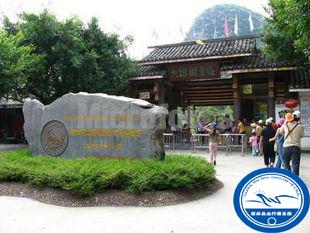 桂林旅游 阳朔 十里画廊景点 大榕树 特惠门票图片