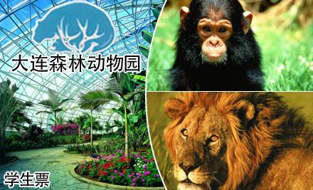 大连森林动物园/动物园学生票
