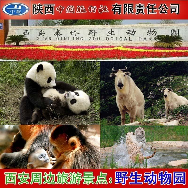西安秦岭野生动物园门票 秦岭野生动物世界门票 不排队用短信换票