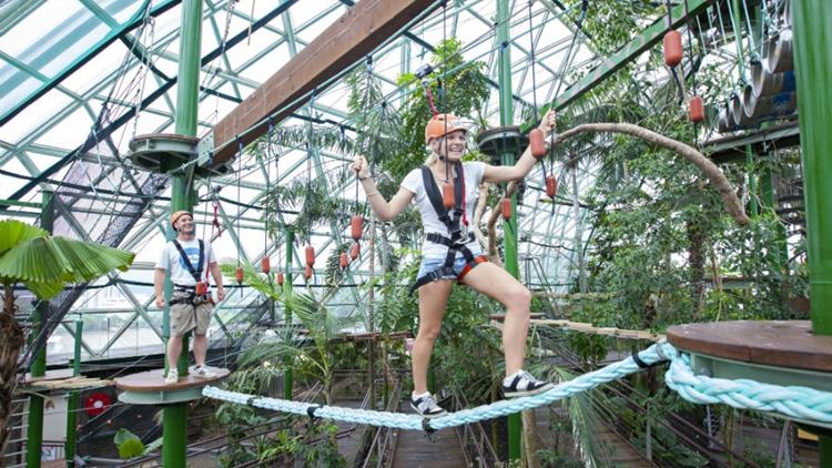 【绳索动物园】凯恩斯室内穹顶野生动物园门票(可选抱考拉/鳄鱼/蛇